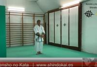 Tensho Kata